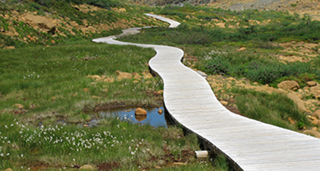 Tablelands trail boardwalk, Gros Morne National Park, Newfoundland and Labrador, © Magi Nams; used with permission.